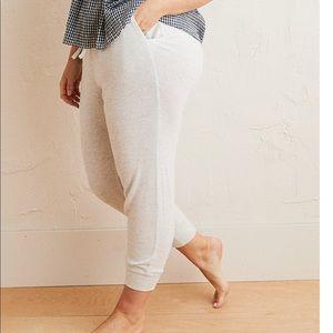 Super soft aerie sweat pants! BRAND NEW